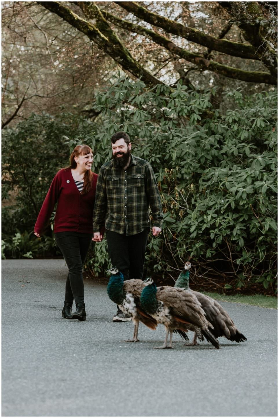 peacock-engagement-session-royal-roads-university-victoria-bc