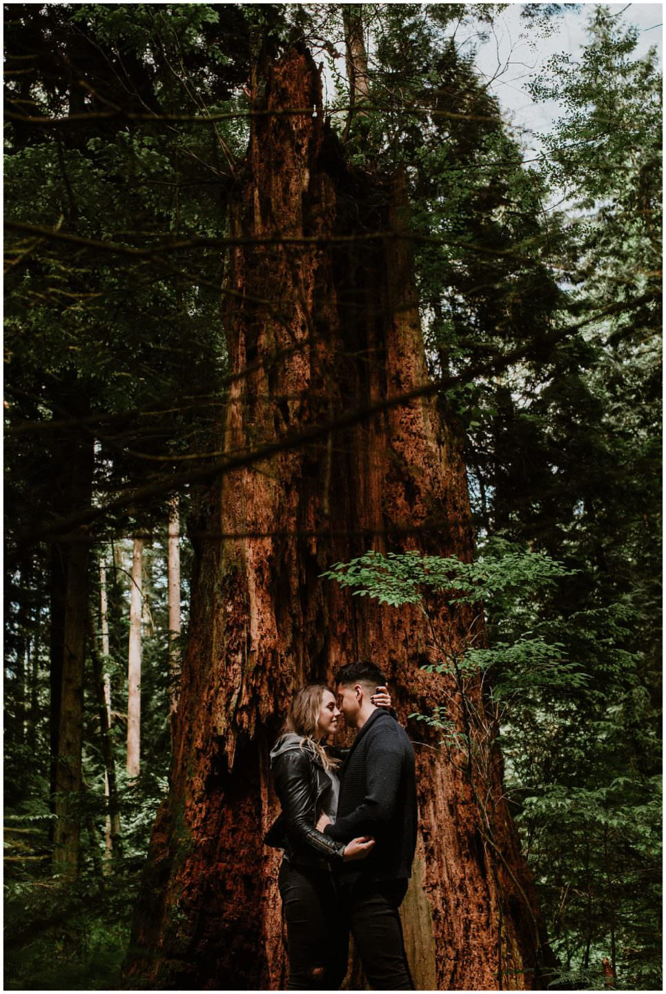 Man and woman holding each other in front of fallen tree in Pacific Spirit Regional Park Vancouver